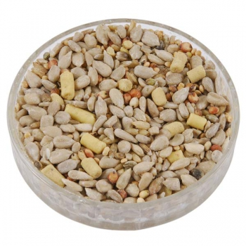 Ark Hearty™ Suet Mix