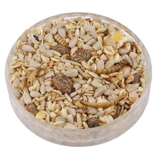Ark Premium Song Bird Food