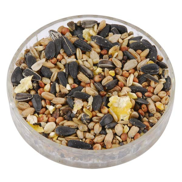 Ark Classic Wild Bird Food