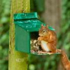 Large Capacity Squirrel Feeder