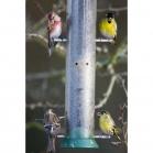 Goldfinch Flocker