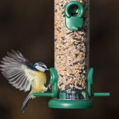 Ring Pull Seed Feeders
