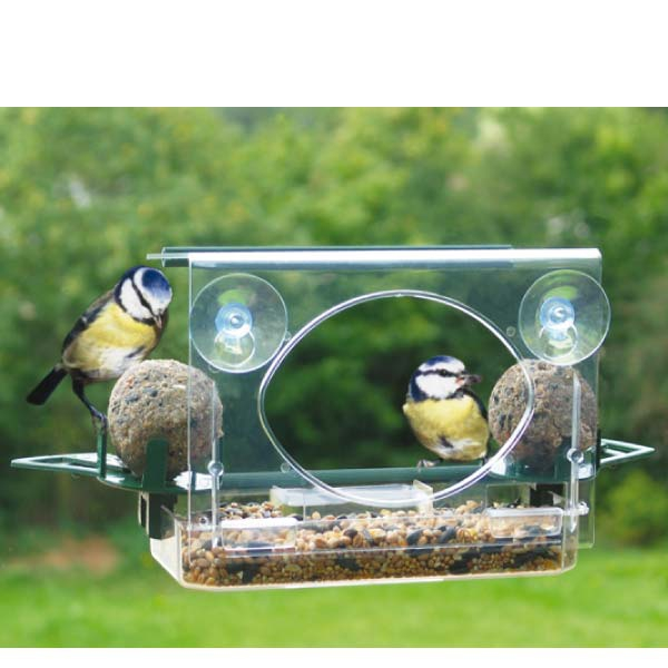 Window Bird Feeders