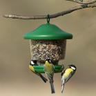 My Favourites Seed Feeder