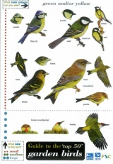 Field Guide - Top 50 Garden Birds