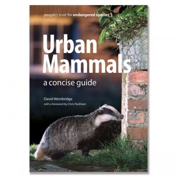 Urban Mammals by David Wembridge