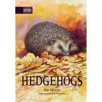 Hedgehogs by Pat Morris
