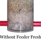Feeder Fresh