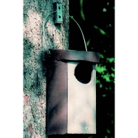 Schwegler No. 5 Owl Nestbox (large Hole)