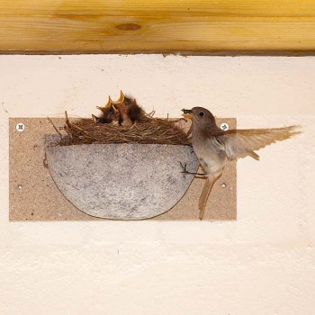 Schwegler No. 10 Swallow Nest