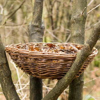 Vivara Pro Long-eared Owl & Hobby Nesting Basket