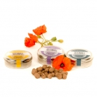 Seedball Wildflower Tins
