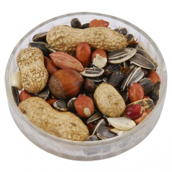 Ark Squirrel Whole Nut