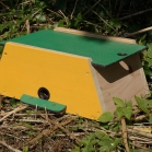 Mini Beast Bumblebee Nest Box