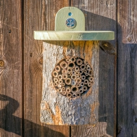 Natural Bee Log