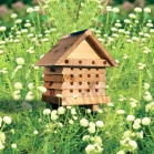 Interactive Solitary Bee House