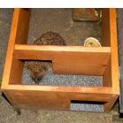 Hedgehog Feeding Station