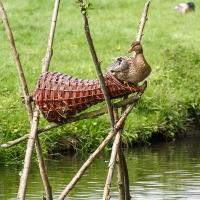 Long Duck Basket