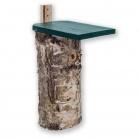 Woodpecker Nest Box