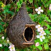 Giant Robin Nest Pocket