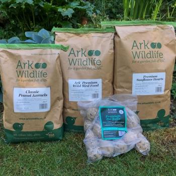 Bird Food Seasonal Deal